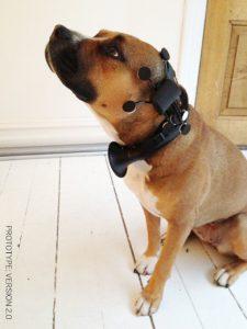 Gadget per la traduzione del pensiero degli animali